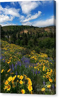 Foothills Canvas Print - Central Washington Spring by Mike Dawson