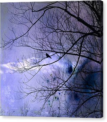 Changing Sky Canvas Print by Gothicrow Images