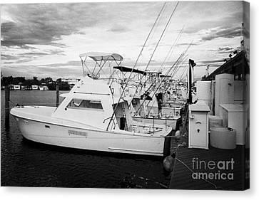 Charter Fishing Boats Charter Boat Row City Marina Key West Florida Usa Canvas Print by Joe Fox