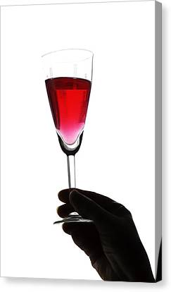 Cheers Canvas Print by Svetlana Sewell