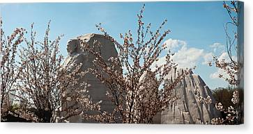 Cherry Trees In Front Of A Memorial Canvas Print