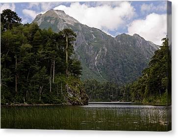 Chile South America Lago El Toro Canvas Print by Scott T. Smith