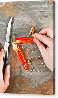 Chilli Pepper Canvas Print by Tom Gowanlock