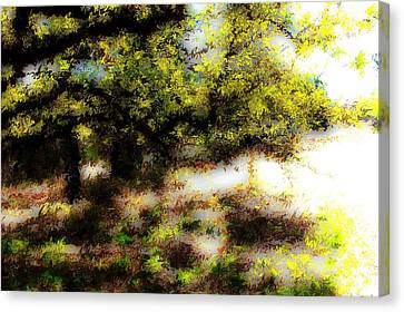 Chime Tree Canvas Print by Terence Morrissey
