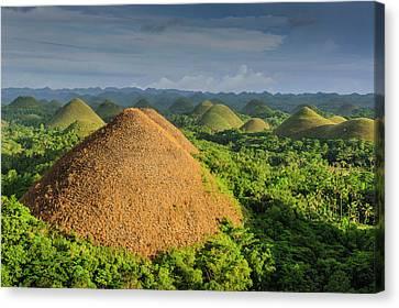 Chocolate Hills, Bohol, Philippines Canvas Print by Michael Runkel