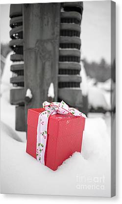 Separation Canvas Print - Christmas Down On The Farm by Edward Fielding