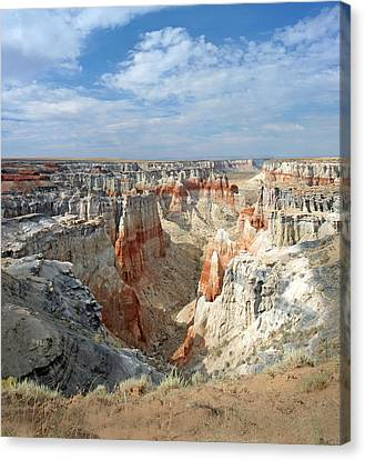 Coal Mine Mesa 14 Canvas Print