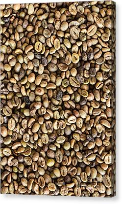 Coffee Beans  Canvas Print by Tosporn Preede