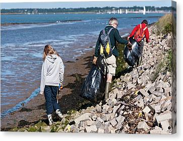 Collecting Litter Canvas Print by Matthew Oldfield
