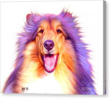 Collie Pics Canvas Print - Collie by Iain McDonald