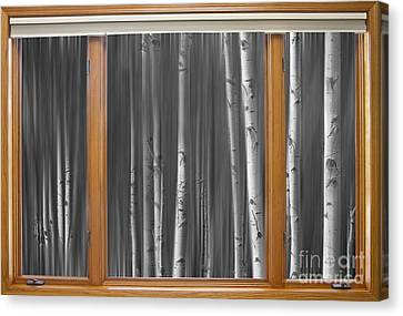Bw Surreal Forest Dream Classic Wood Window View  Canvas Print