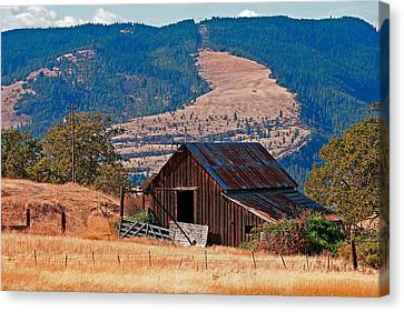 Columbia River Barn Canvas Print by Peter Tellone