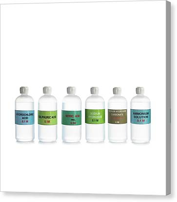 Common Acids And Bases Canvas Print