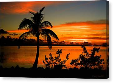 Conch Key Bay Sunset Canvas Print by Julis Simo