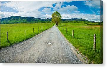Country Gravel Road Passing Canvas Print