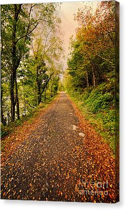 Hdr Landscape Canvas Print - Country Lane by Adrian Evans