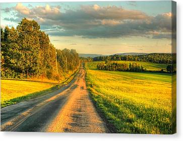 Country Road Canvas Print by Ed Roberts