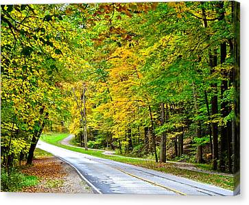 Oil Slick Canvas Print - Country Road by Frozen in Time Fine Art Photography