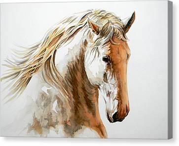 Valiant Canvas Print by J- J- Espinoza