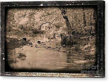 Creek Canvas Print by John Krakora