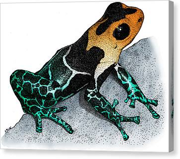 Bromeliad Canvas Print - Crowned Poison Frog by Roger Hall