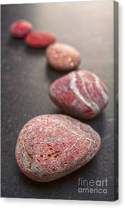 Curving Line Of Red And Grey Pebbles On Dark Background Canvas Print by Colin and Linda McKie