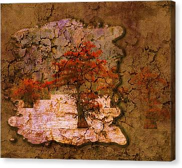 Cypress - Abstract Canvas Print by J Larry Walker