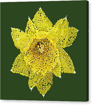 Daffodil Bedazzled Canvas Print by R  Allen Swezey