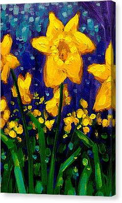 Dancing Daffodils Cropped  Canvas Print