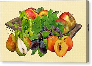 Day Fruits Canvas Print