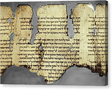 Against The War Canvas Print - Dead Sea Scroll Fragment, 1st Century Ad by Science Photo Library