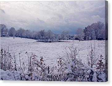 December Snow 005 Canvas Print