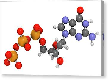 Deoxyguanosine Triphosphate Molecule Canvas Print by Molekuul