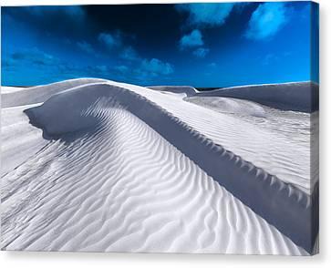 Desert Sands Canvas Print by Julian Cook