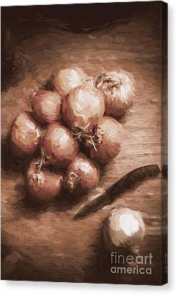 Digital Painting Of Brown Onions On Kitchen Table Canvas Print by Jorgo Photography - Wall Art Gallery