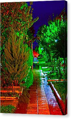 Digital Painting Of Colouful Gardens At Nightime Canvas Print