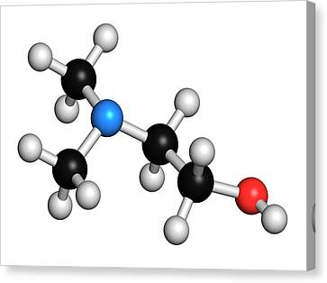 Dimethylaminoethanol Molecule Canvas Print by Molekuul