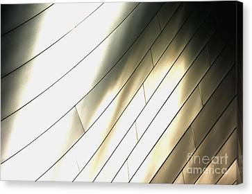 Disney Concert Hall 13 Canvas Print by Micah May