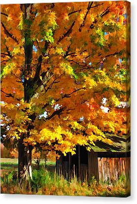 Door County Yellow Maple Migrant Shack Canvas Print by Christopher Arndt