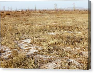 Dried Up Lake Bed From Drought Canvas Print