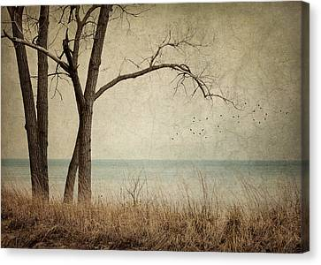 Indiana Landscapes Canvas Print - Drifting by Amy Weiss