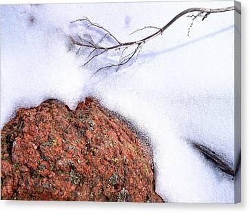 Drifting Canvas Print by Tom Druin