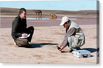 Drying Saharan Lake Canvas Print by Thierry Berrod, Mona Lisa Production