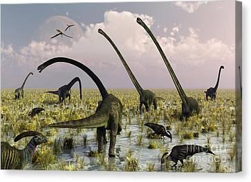 Duckbill Dinosaurs And Large Sauropods Canvas Print by Mark Stevenson