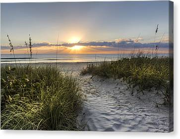 Dune Trail Canvas Print by Debra and Dave Vanderlaan