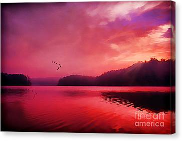 Early To Rise Canvas Print by Darren Fisher