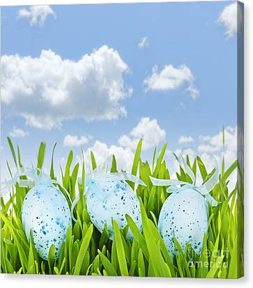 Easter Eggs In Green Grass Canvas Print by Elena Elisseeva