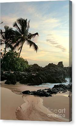 Edge Of The Sea Canvas Print by Sharon Mau