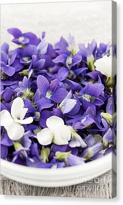 Edible Violets In Bowl Canvas Print