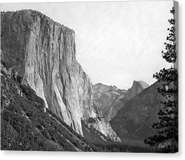 El Capitan Canvas Print by Thomas Leon